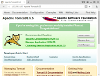 Apache Tomcat 8.5.5 - веб-интерфейс