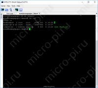 Samba - Установка и Настройка на Raspberry Pi, Orange Pi, Banana Pi - Добавленный файл в share