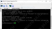 SMBus Работа с I2C на Python в Raspberry Pi - Открытие Python REPL